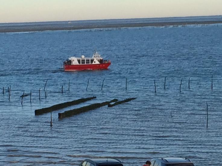 un bateau et le bassin d'Arcachon